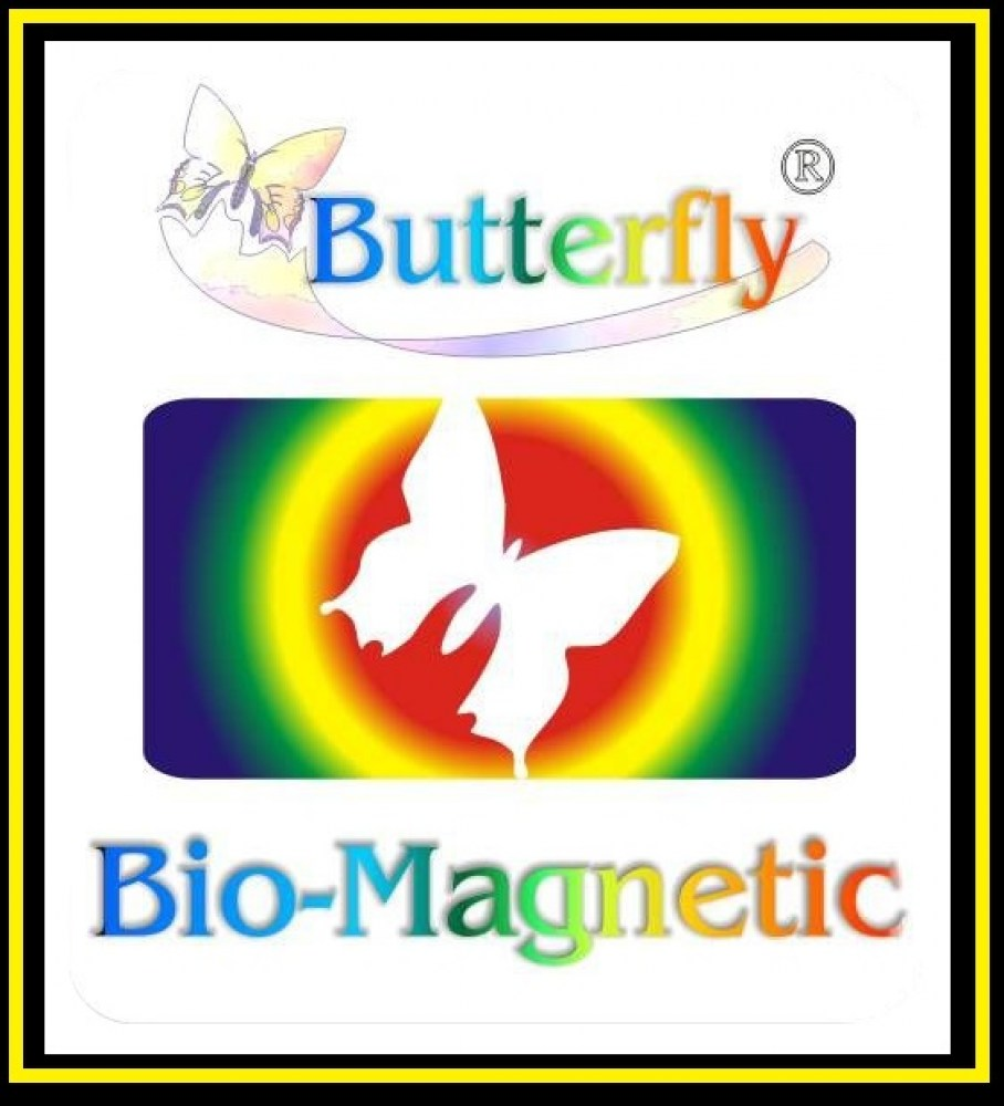 Logo_Butterfly_Bio_Magnetic_System1